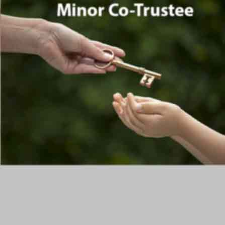 Minor Trustee With Without Fund